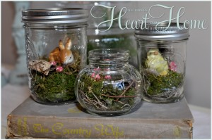 Easy DIY Terrarium in a Jar!