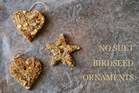 bird seed ornaments