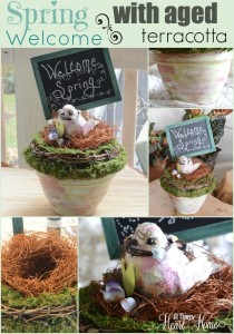 Spring Decoration with Bird's Nest!