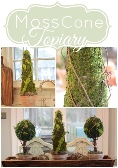 Moss Cone Topiary