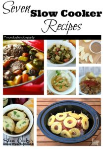 Slow Cooker Recipes to try this month!