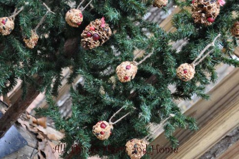 trees decorated for the bir - Outdoor Christmas Tree Decorations For Birds
