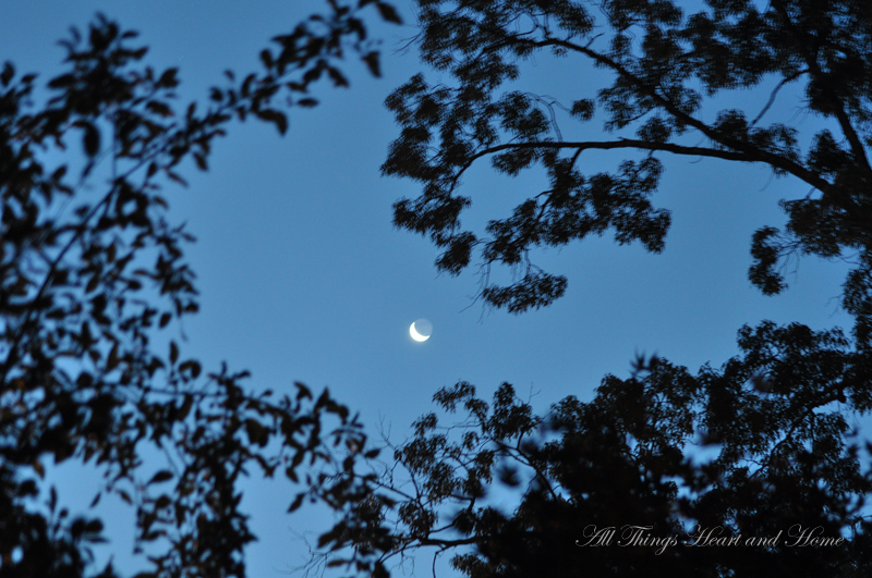 July 8 cresent moon