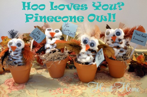 hoo-loves-you-pinecone-owl-490x325