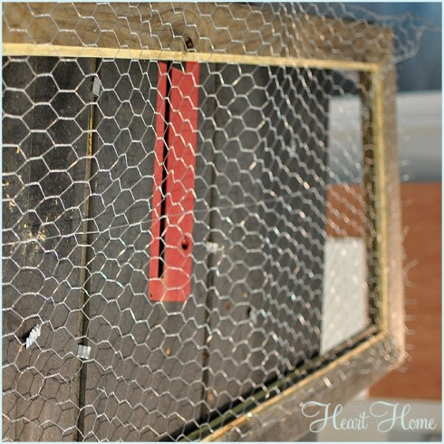 chicken wire screen
