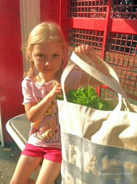 easy farmers market bag