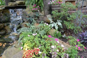 creating-a-back-yard-garden