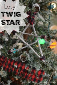 Easy-Twig-Star