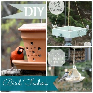 Spring DIY Projects – Bird Feeders, Beach Glass Jars and Vases!