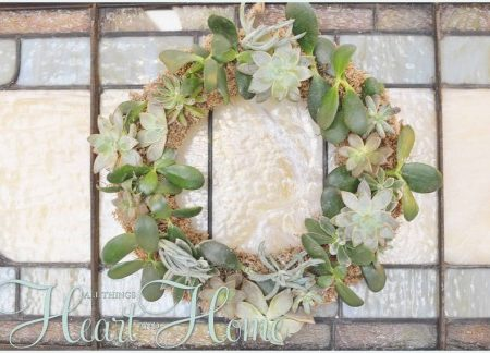 Making a live wreath with succulents