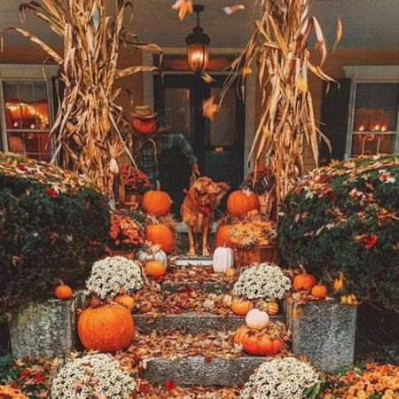 halloween porches