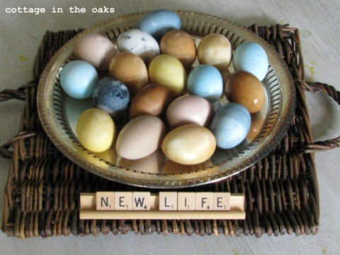 Easter Ideas All Things Heart And Home